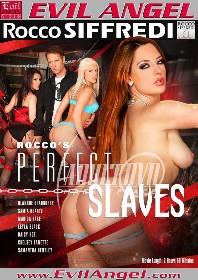 罗科的完美奴隶